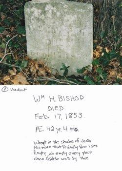 William Henry Bishop