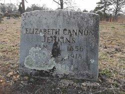 Elizabeth <i>Cannon</i> Jenkins