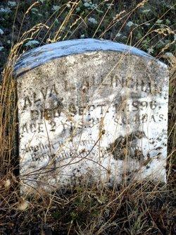 Alva L Allingham