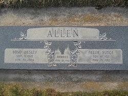 Nellie Louise <i>Bunce</i> Allen