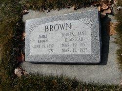 Louisa Jane <i>Olmstead</i> Brown