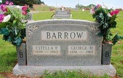 Estella Flora Stella <i>Springer</i> Barrow