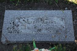 Mary Merba <i>Morgan</i> Adams