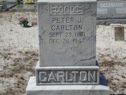Peter J Carlton