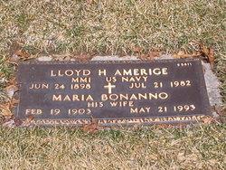 Lloyd H Amerige