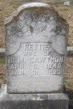 Antionette Elizabeth Nettie <i>Lofton</i> Cawthon