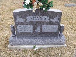 Wayne K Adams