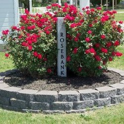 Rosebank Cemetery