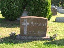Patrick B Arnone