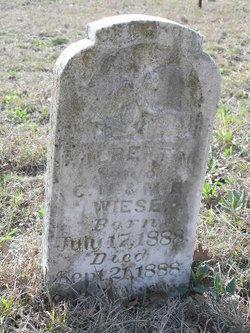 Albert N Wiese