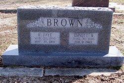 Emmett William Brown