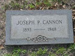Joseph Parker Jake Cannon
