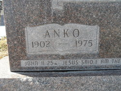 Anko Bolhuis