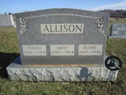 Daisy <i>Over</i> Allison