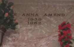 Dee Anna <i>Turner</i> Amend