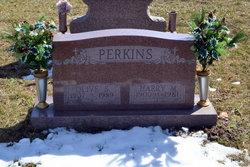 Harry Mitchel Perkins