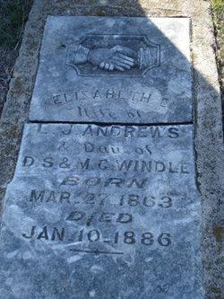 Elizabeth E. Andrews