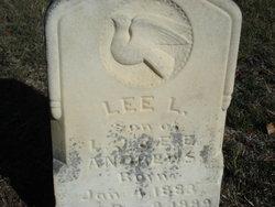 Lee L. Andrews