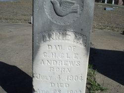Annie Mary Andrews