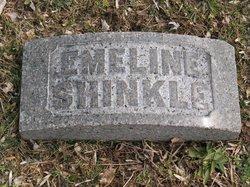 Nancy Emeline <i>Livingston</i> Shinkle