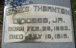 James Thornton Bidgood, Jr