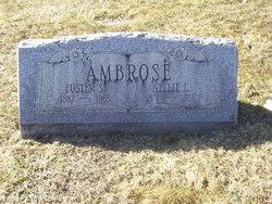 Nellie L <i>Bowman</i> Ambrose