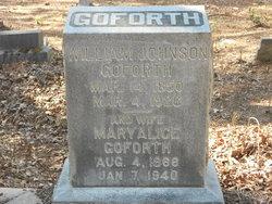 William Johnson Goforth