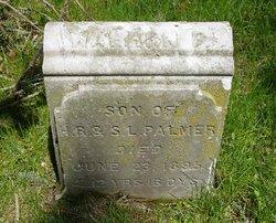 Warren Palmer