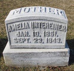 Amelia Stefane <i>Ludin</i> Untereiner