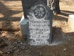 Caroline <i>Wessinger</i> Seay