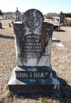 Anna Louisa <i>Cothran</i> Holliday