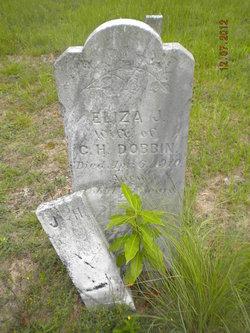 Eliza J Dobbin