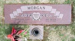 Carlene Ann <i>Hickman</i> Morgan