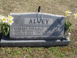 Barbara Susan Sue <i>Ashby</i> Alvey