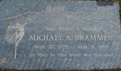 Michael A Brammer