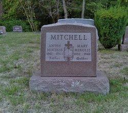 Anton Mitchell