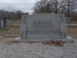 Simeon Otto Carey