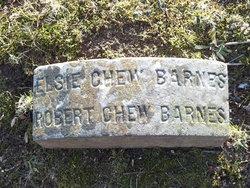 Elsie Chew Barnes