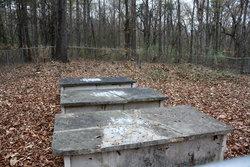Little Family Cemetery