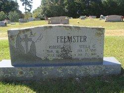 Stella G. Feemster