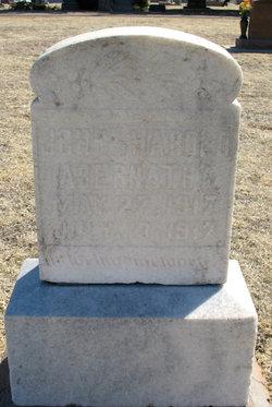 John Harold Abernathy