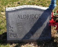 David G. Aldridge