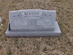 Theodore Allen Benson