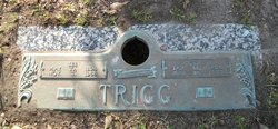Lee Trigg