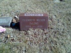 Elizabeth <i>Wilson</i> DeLong
