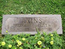Harry Ellsworth Akins