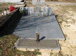 Elton L. Kelly