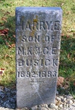 Harry E Busick