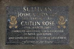 Caitlin Rose Sullivan