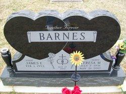 Terry Maxine <i>Bonney</i> Barnes